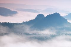 Colorful daybreak in a beautiful hilly landscape. Peaks of hills are sticking out from fog. The fog is swinging between trees. Stock Image