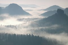 Colorful daybreak in a beautiful hilly landscape. Peaks of hills are sticking out from fog. The fog is swinging between trees. Stock Images