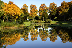 Colorful deciduous trees in autumn. Netherlands, province Gelderland, city Nijmegen: mirror image of colorful trees in the water of a pond in the park the Stock Image