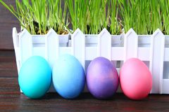 Colorful decorative eggs of rainbow colors on a background of green grass. Easter. royalty free stock photos