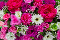 Colorful decorative flowers Royalty Free Stock Image