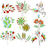 Colorful decorative flowers, branches and leaves Stock Image