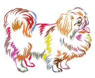 Colorful decorative standing portrait of dog Pekingese vector. Colorful decorative portrait of standing in profile Pekingese, vector isolated illustration on stock illustration