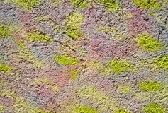 Colorful decorative relief plaster on wall Royalty Free Stock Photo