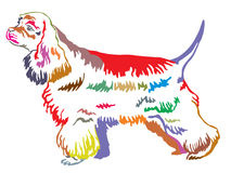Colorful decorative standing portrait of American Cocker Spaniel Stock Image