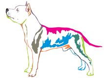 Colorful decorative standing portrait of American Staffordshire. Colorful contour decorative portrait of standing in profile dog American Staffordshire Terrier Royalty Free Stock Photo