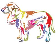 Colorful decorative standing portrait of dog Field Spaniel. Colorful decorative portrait of standing in profile Field Spaniel, vector isolated illustration on Stock Image
