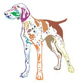 Colorful decorative standing portrait of German Shorthaired Poin. Colorful contour decorative portrait of standing in profile German Shorthaired Pointer, vector Royalty Free Stock Photo
