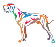 Colorful decorative standing portrait of Great Dane vector illus. Colorful decorative portrait of standing in profile Great Dane, vector isolated illustration on Stock Photo