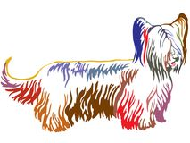 Colorful decorative standing portrait of Skye Terrier vector ill vector illustration