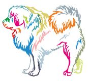 Colorful decorative standing portrait of Tibetan Mastiff. Colorful contour decorative portrait of standing in profile dog Tibetan Mastiff, vector isolated Stock Photo
