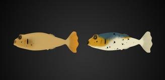 Colorful deep sea fish Royalty Free Stock Image