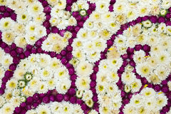 Colorful design pattern of flower texture and background Royalty Free Stock Photo
