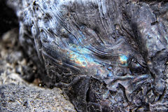 Colorful detail of the eruptive slag Royalty Free Stock Photo