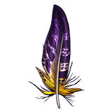 Colorful detailed purple and yellow bird feather, isolated on white background. Vector illustration. Stock Photos