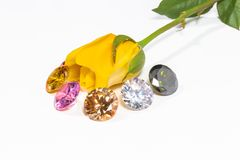 yellow rose flower with colorful diamonds Stock Image