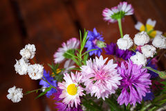 Colorful different flowers bouquet Royalty Free Stock Photo