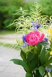 Colorful different and various flowers with green background, close up, Mothers day, bouquet of wild flowers Stock Photography