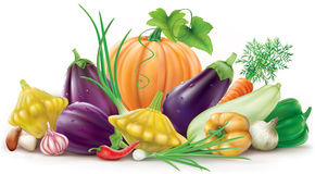 Colorful different vegetables Stock Photo