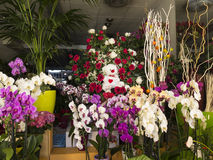 Colorful display on a flower shop Royalty Free Stock Photos