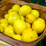 Colorful Display Of Lemons In Market Royalty Free Stock Photography