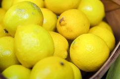 Colorful Display Of Lemons In Market Royalty Free Stock Photos