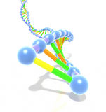 Colorful DNA helix strand Stock Photography