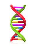 Colorful Dna Model Royalty Free Stock Photos
