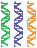 Colorful DNA Patterns Stock Photo