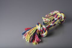 Colorful dog cotton rope for games and fun, grey background, top front view, dog training accessory. Colorful dog cotton rope for games and fun, grey background Stock Images