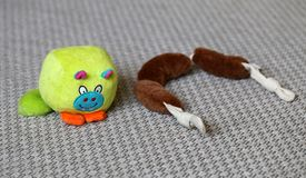 Colorful Dog Toys on a Gray Carpet. The toys are brown stuffed sausages and green little monster toy. Cute and colorful toys. Closeup photo with macro lens stock photo