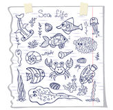 Colorful Doodle set.Funny Sea Life Stock Photos