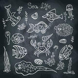 Colorful Doodle set.Funny Sea Life Royalty Free Stock Photography