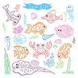 Colorful Doodle set.Funny Sea Life Royalty Free Stock Photos