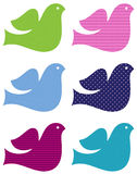 Colorful doves set isolated on white vector illustration