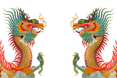 Colorful Dragons. Royalty Free Stock Photos