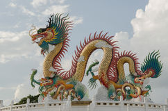 Colorful Dragons Stock Images