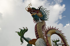 Colorful Dragons Stock Photography