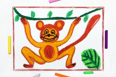 Drawing: smiling monkey is hanging on a liana. Colorful drawing: smiling monkey is hanging on a liana stock illustration