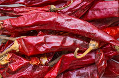 Colorful dried giant chili Stock Photography