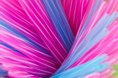 Free Colorful Drinking Straws Stock Image - 16059231