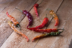 Colorful dry chili peppers on an aged wood table in rustic style Royalty Free Stock Images