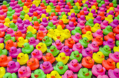 Colorful Duck Toy Stock Images