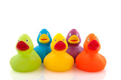 Free Colorful Ducks Royalty Free Stock Photography - 11618297
