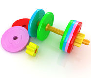 Colorful dumbbells are assembly and disassembly Stock Image