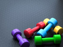 Colorful dumbbells Royalty Free Stock Photos