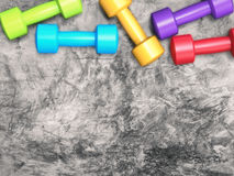 Colorful dumbbells Stock Image