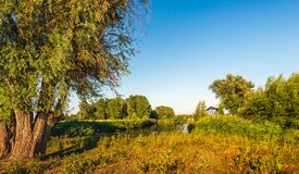 Colorful Dutch nature reserve with a bright blue sky in the summ. Colorful Dutch nature reserve De Groesplaat with a creek and wild plants in the summer season stock photo