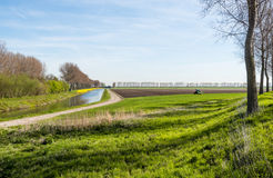 Colorful Dutch rural landscape early in the morning. Stock Photography