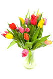 Colorful Dutch tulips. In glass vase over white background Royalty Free Stock Photography